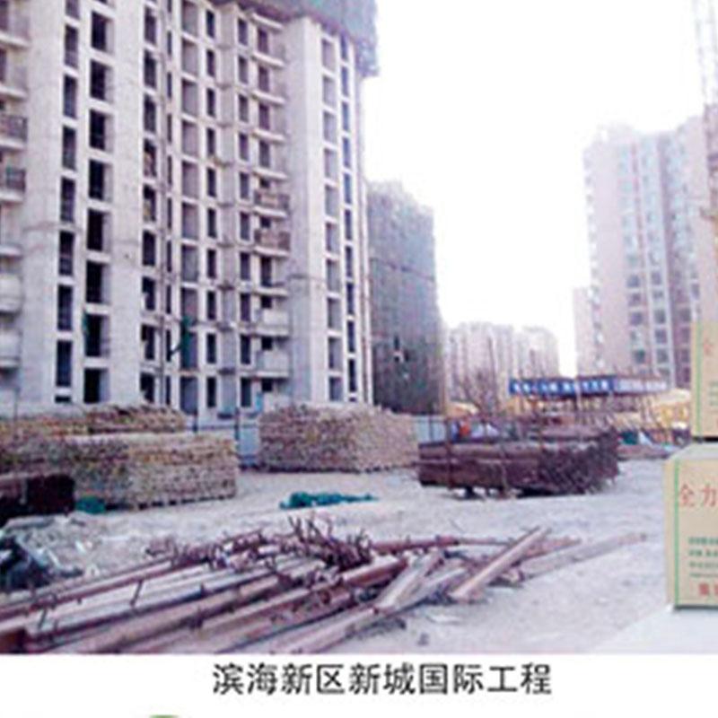 滨海新区新城国际工程