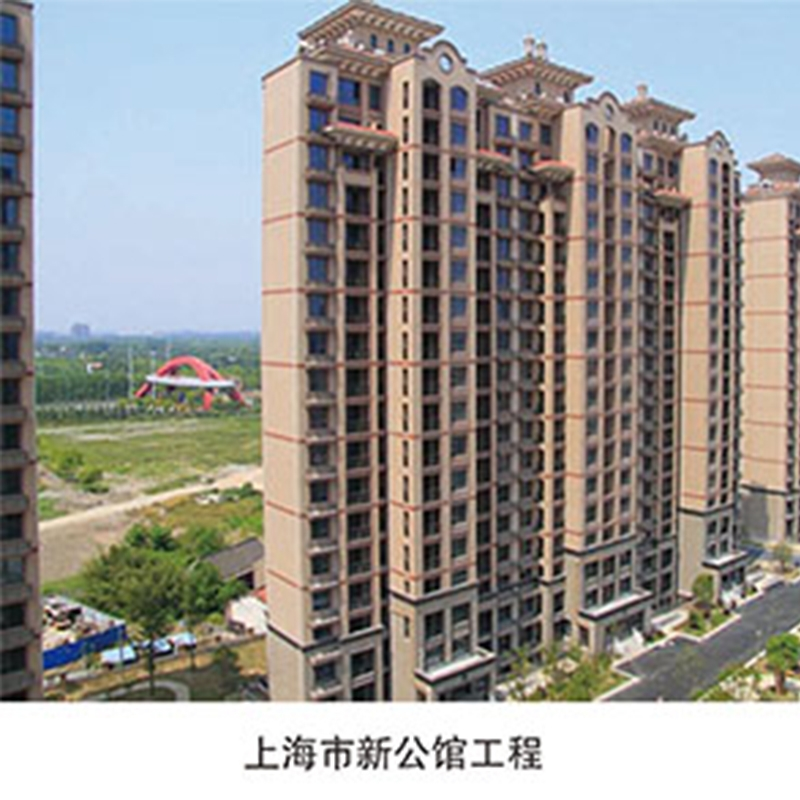 上海市新公馆工程