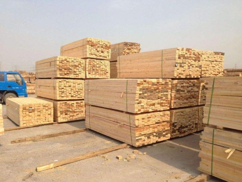 河北精品木方厂家